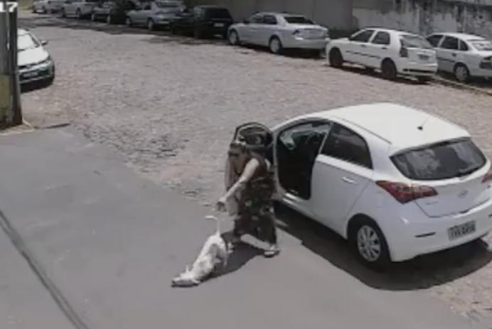Woman abandons dog