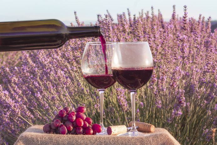 Portable travel wine glass
