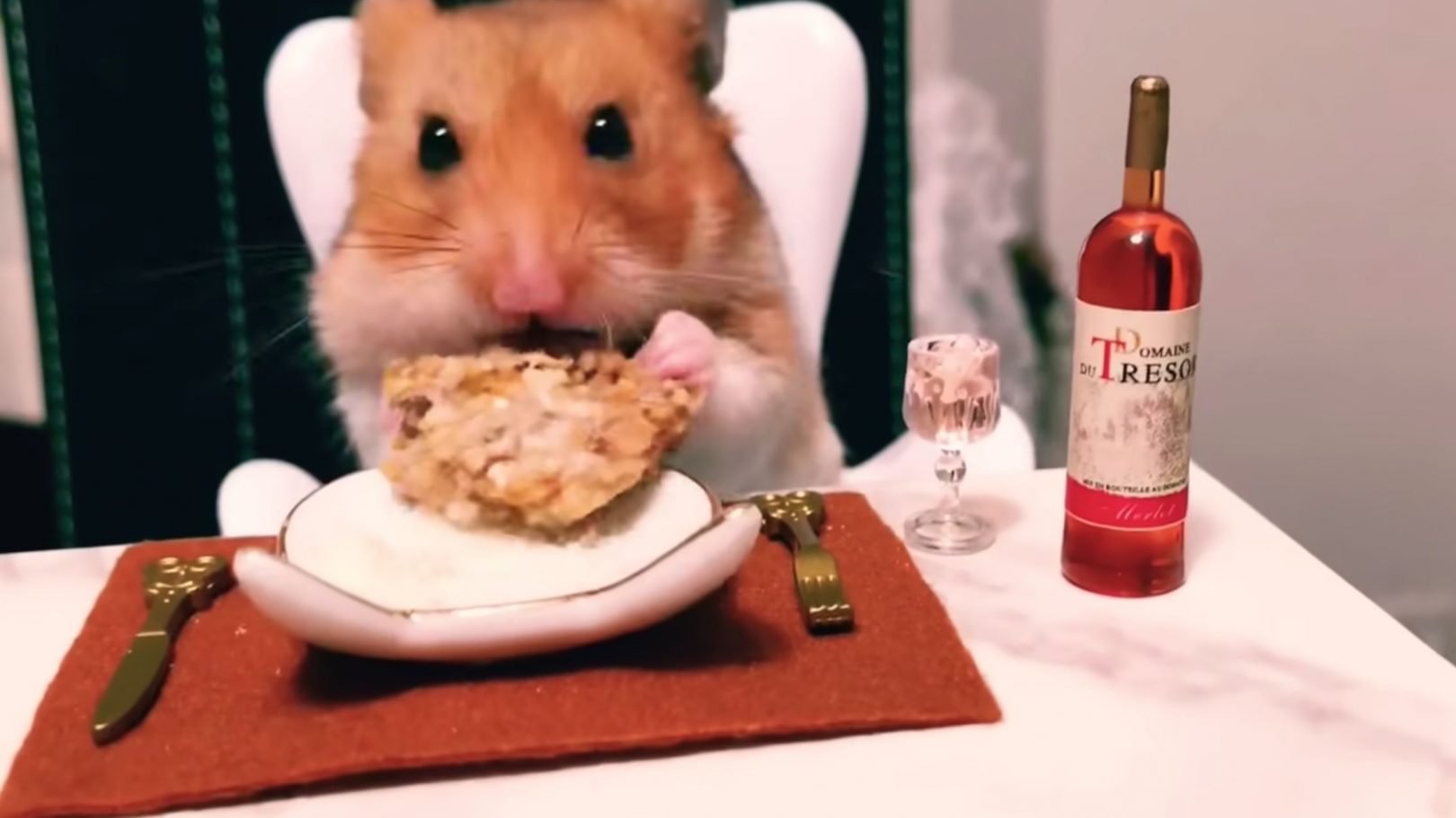 Christmas Eve Dinner Restaurants Near Me 2020 Tiny hamster enjoys lavish Christmas Eve dinner