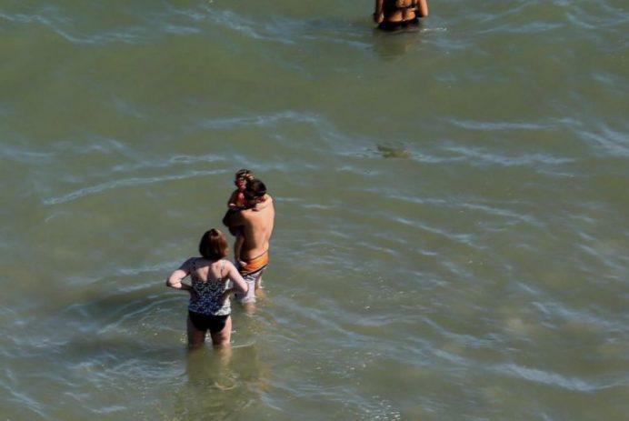shark lures near beachgoers