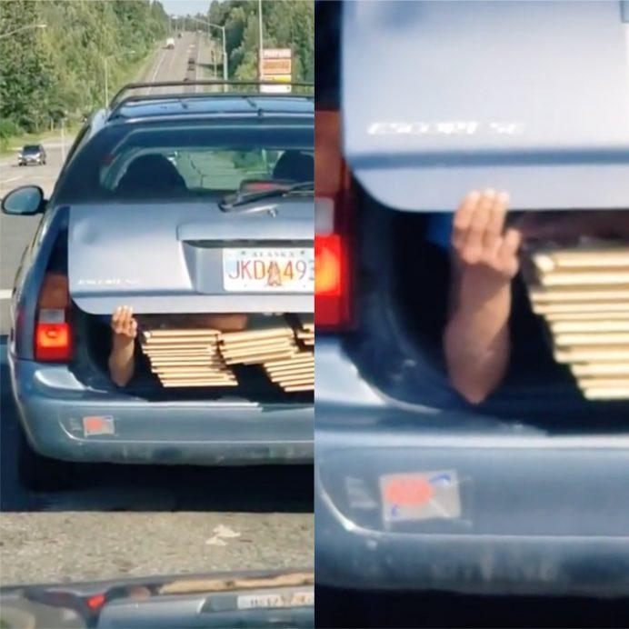 human hand trunk