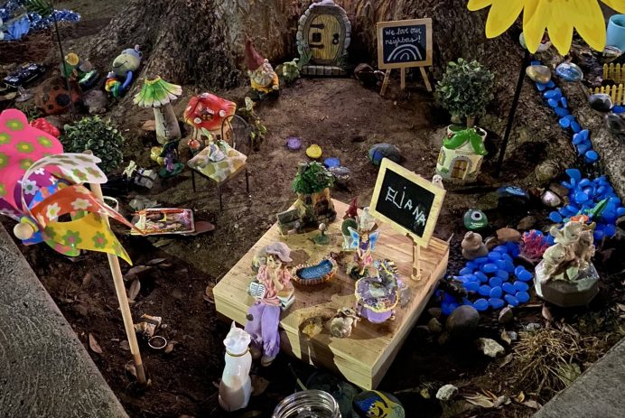 "Eliana's ""fairy garden"""