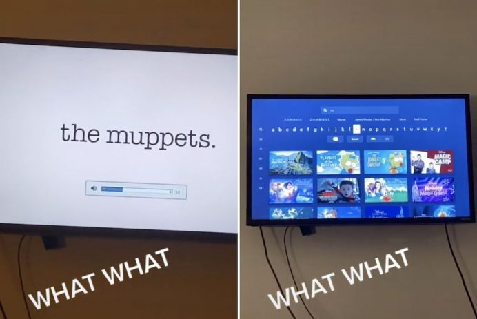 Muppets The Office