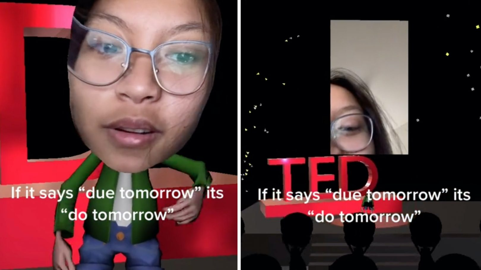 TED Talk filter TikTok