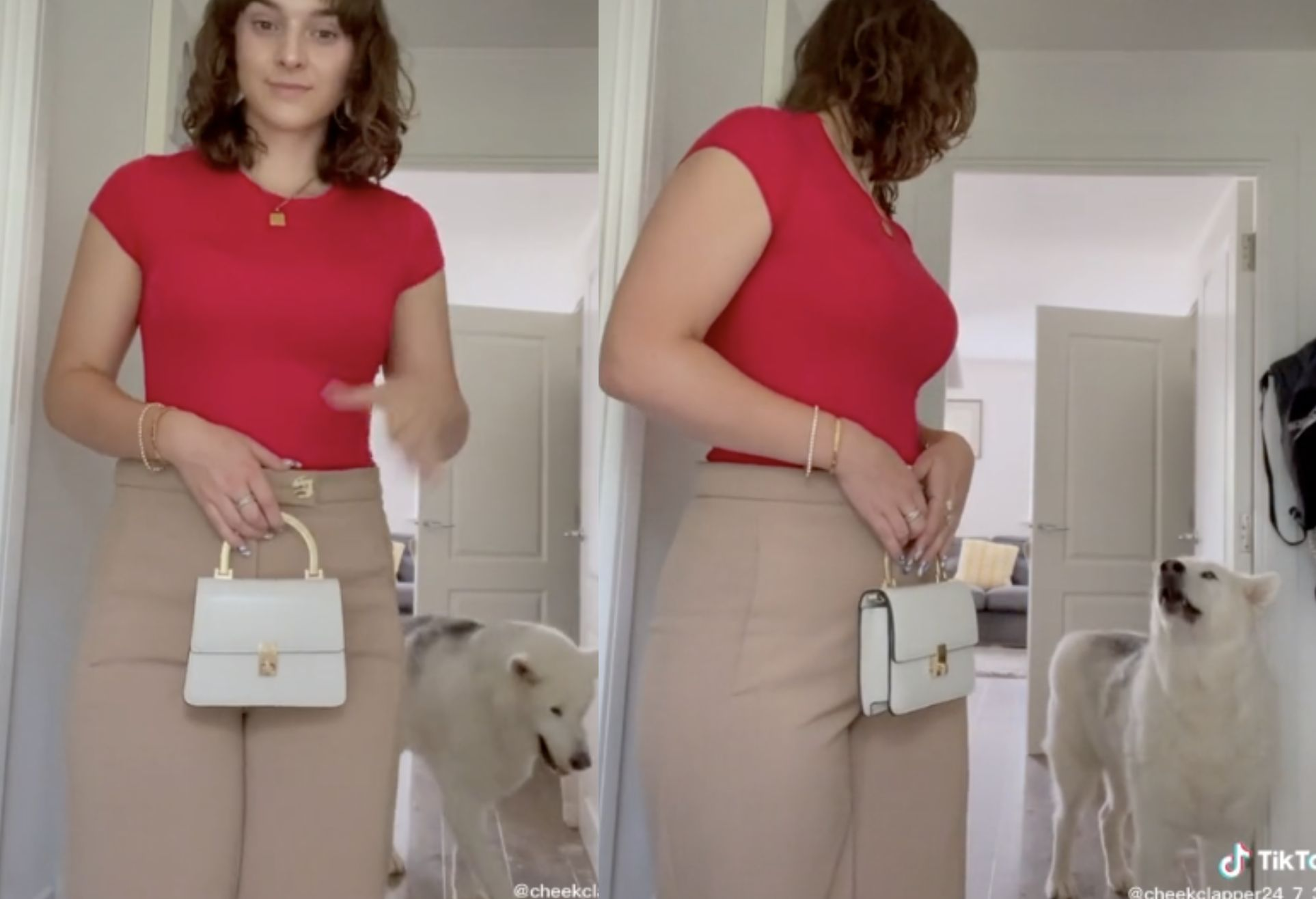 Woman is stunned after dog seemingly asks her a question